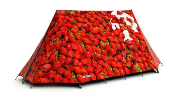 aardbeien-tent-fieldcandy
