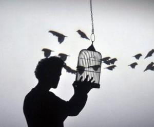 kunst-intallatie-vogelkooi