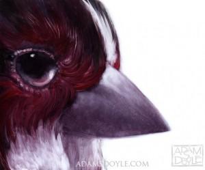 adam-s-doyle-vogel-schilderij-3