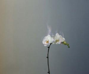 fotografiebeurs-amsteram-unseen-jiang-zhi