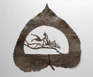 snijden-illustratie-gedroogde-bladeren