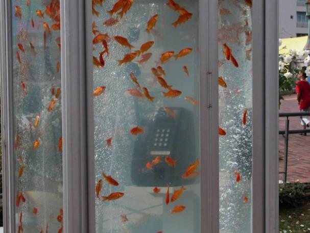 telefooncel-als-aquarium-1