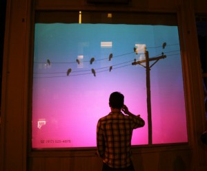 bird-on-a-wire-interactieve-winkel-display