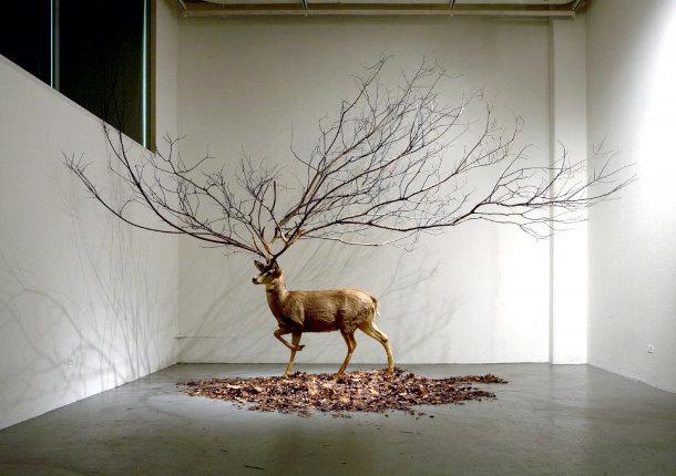 Surrealisme van de koreaanse fotograaf kim myeong beom for Art contemporain sculpture