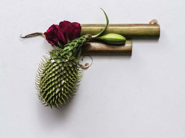 Gedroogde planten als onschadelijke wapens eyespired - Eigentijds object ...