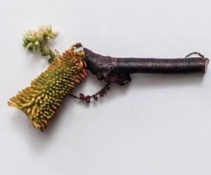 gedroogde-planten-kunst-Sonia-Rentsch