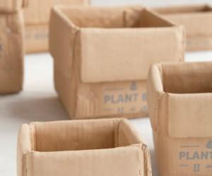 Plant Box plantenbak