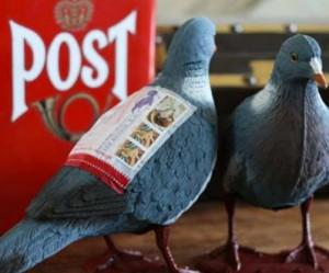 plastic-post-duif