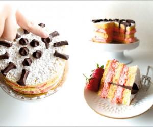 donkere-chocolade-dessert-spijker-brocca