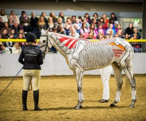 Teken de anatomie van een paard