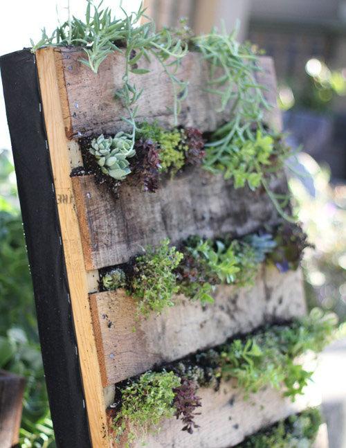 fotos de jardins horizontais : fotos de jardins horizontais:Schrijf jezelf in voor de wekelijkse nieuwsbrief , en ontvang het