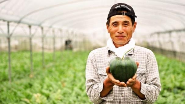 hartjes-watermeloenen-japan