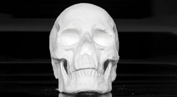 mens-schedel-beeld