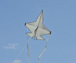 JSF vlieger