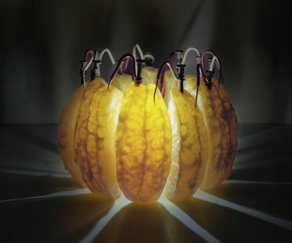 fruit-lampen-2