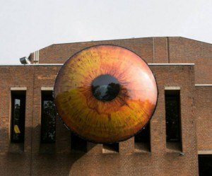 oog-den-bosch