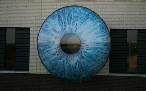 oog-den-bosch-4