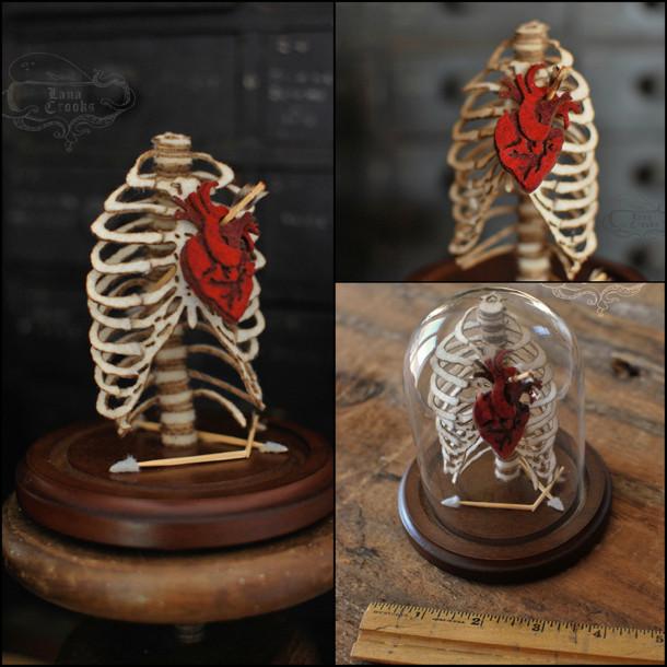 anatomische-preparaten-lana-crooks-4