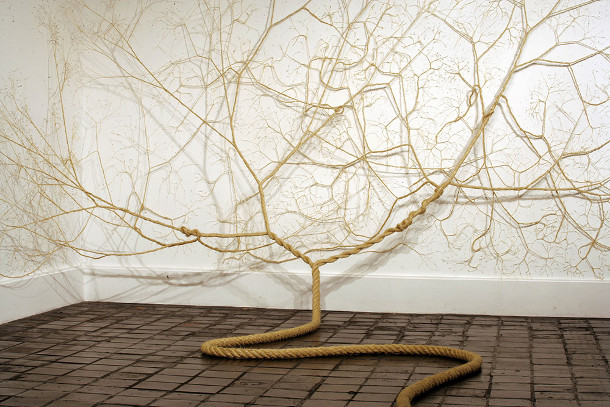 bomen-touw-installatie-2