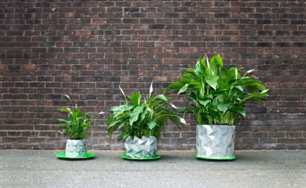 Potten Voor Planten.Deze Origami Potten Veranderen Van Vorm Als De Plant Groeit Eyespired