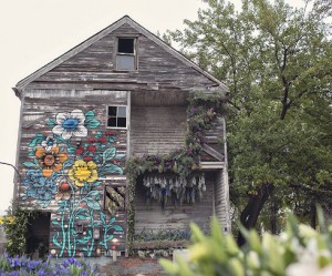 flower-house-detroit