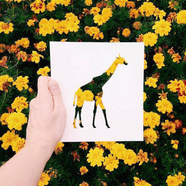 papieren-silhouetten-dieren-natuur-8