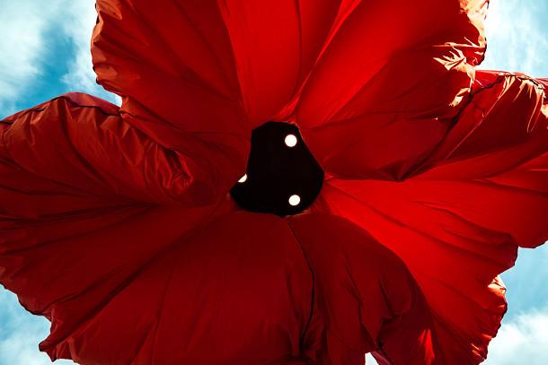 interactieve-bloemen-installatie-3