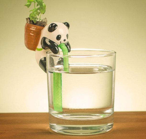 Schattige Water Drinkende Plantenpotjes Van Dieren Eyespired