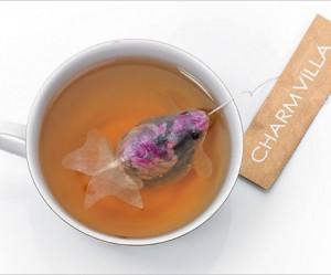 theezakje-goudvis