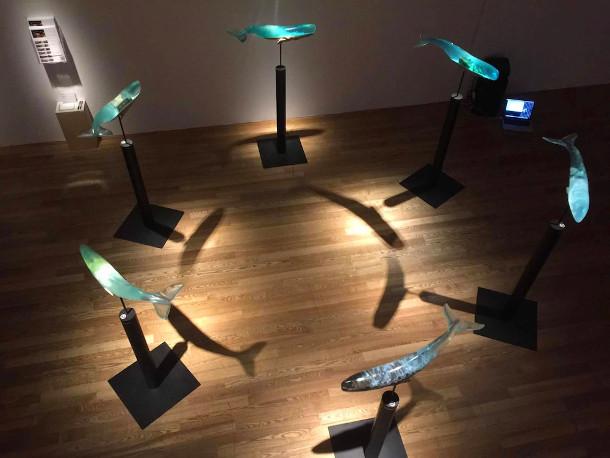walvis-sculpturen-4