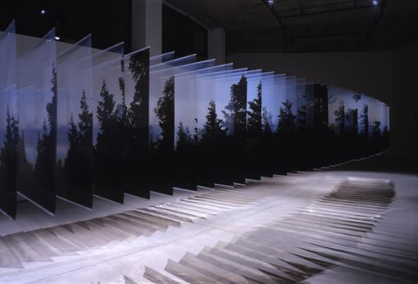 foto-serie-bossen-wolken-3