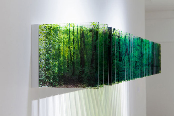 foto-serie-bossen-wolken