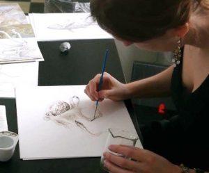 inkt-octopus-tekening