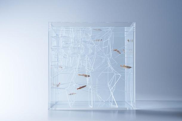 sculpturale-aquaria-2