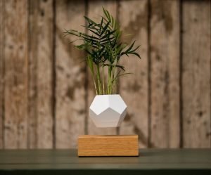 zwevende-plantenpot