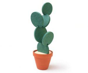cactus-onderzetter