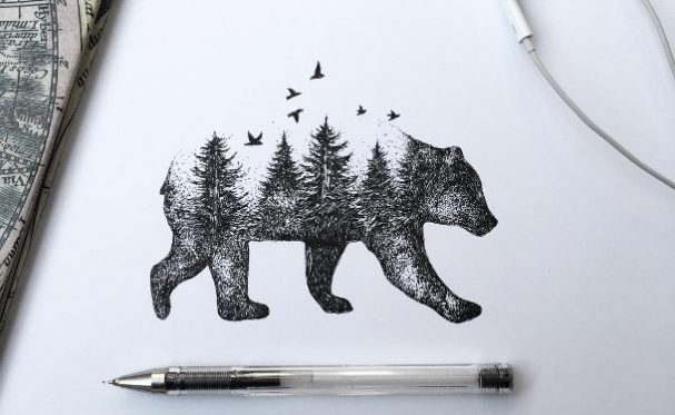 illustraties-dieren-bomen
