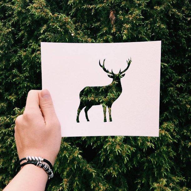 papieren-silhouetten-dieren-natuur-3