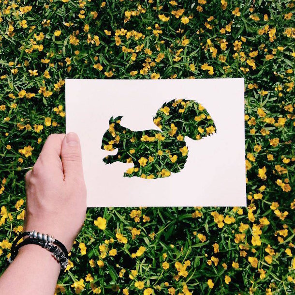 papieren-silhouetten-dieren-natuur-5