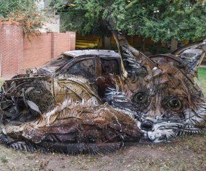 afval-dieren-beelden