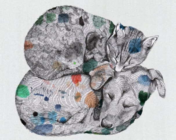 illustraties-lissa-thimm