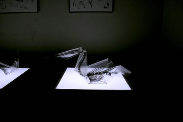 rontgen-origami-6