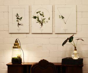 spruitje-plantenlampen