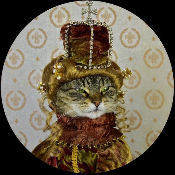 klassieke-portretten-katten-2