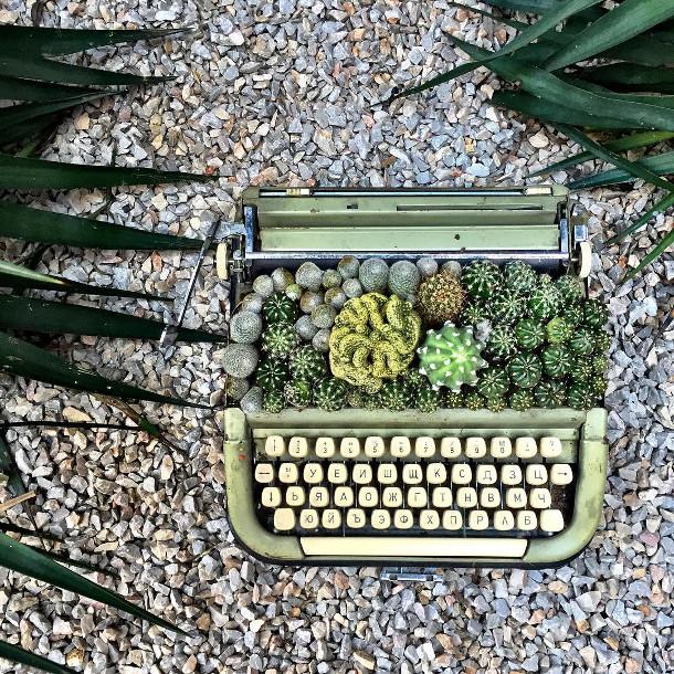 vetplanten-typemachines-3