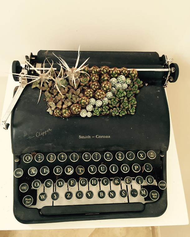vetplanten-typemachines-4