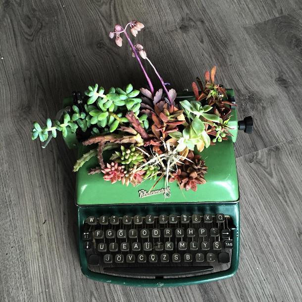 vetplanten-typemachines-6