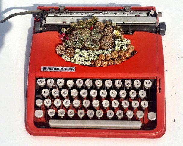 vetplanten-typemachines