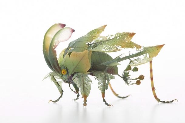 fantasierijke-insecten-5