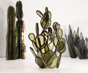 glazen-cactussen-vetplanten
